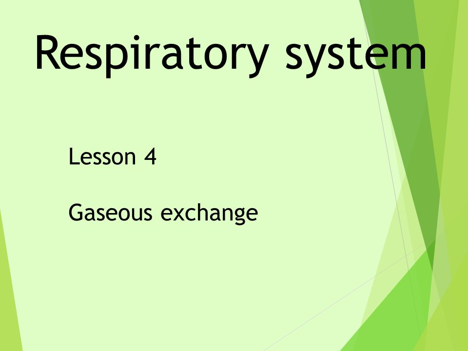 Respiratory system Lesson 4 Gaseous exchange