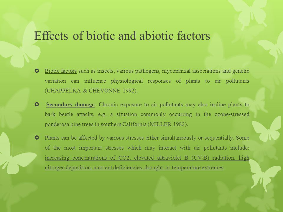 Effects of biotic and abiotic factors  Biotic factors such as insects, various pathogens, mycorrhizal associations and genetic variation can influenc