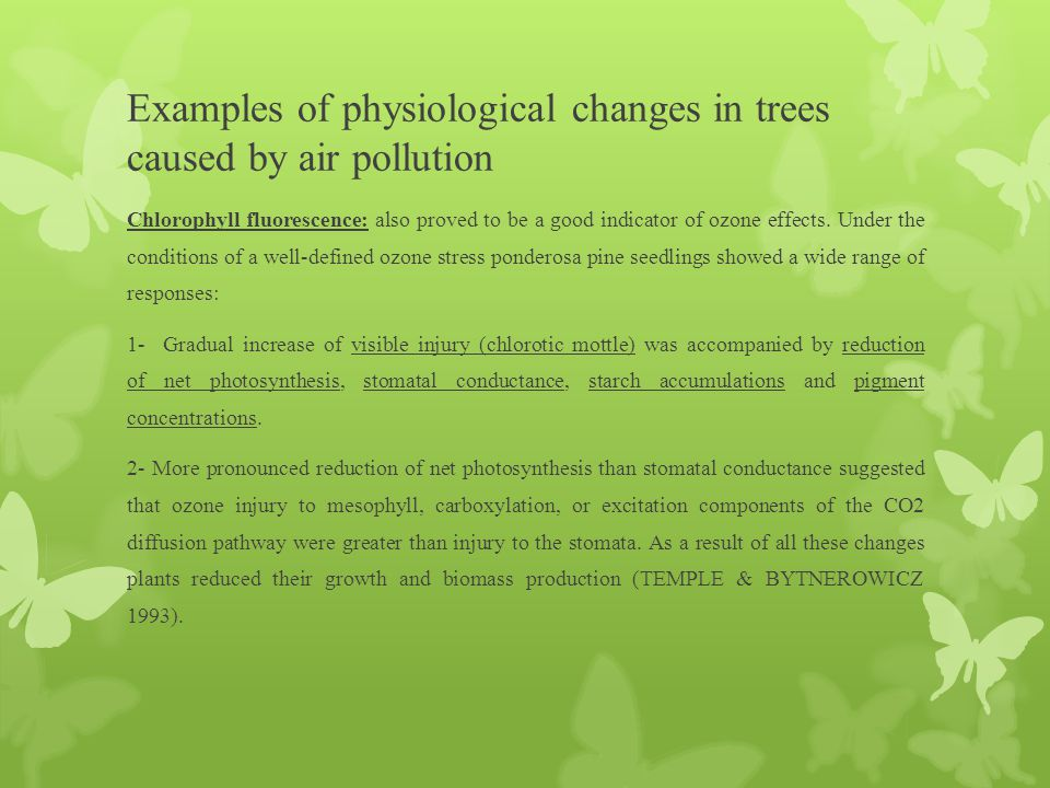 Examples of physiological changes in trees caused by air pollution Chlorophyll fluorescence: also proved to be a good indicator of ozone effects. Unde