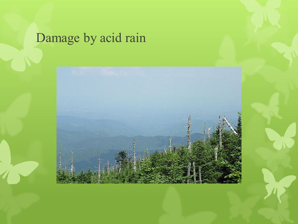 Damage by acid rain
