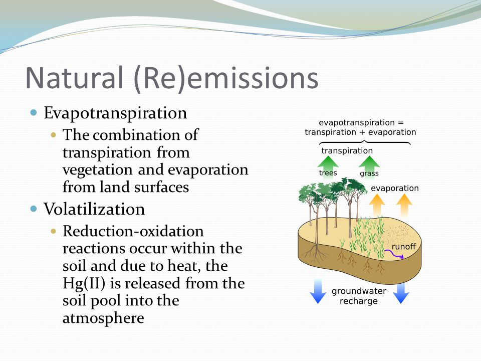 Natural (Re)emissions Evapotranspiration The combination of transpiration from vegetation and evaporation from land surfaces Volatilization Reduction-oxidation reactions occur within the soil and due to heat, the Hg(II) is released from the soil pool into the atmosphere