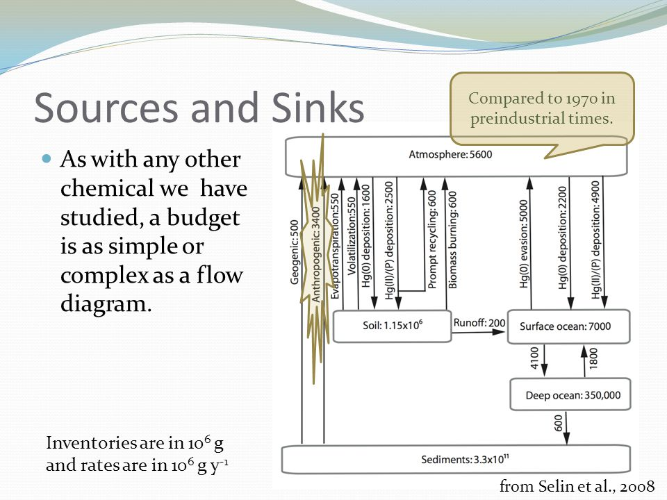 Sources and Sinks As with any other chemical we have studied, a budget is as simple or complex as a flow diagram.