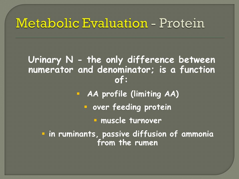 Urinary N - the only difference between numerator and denominator; is a function of:  AA profile (limiting AA)  over feeding protein  muscle turnov