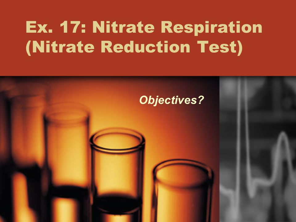 Ex. 17: Nitrate Respiration (Nitrate Reduction Test) Objectives