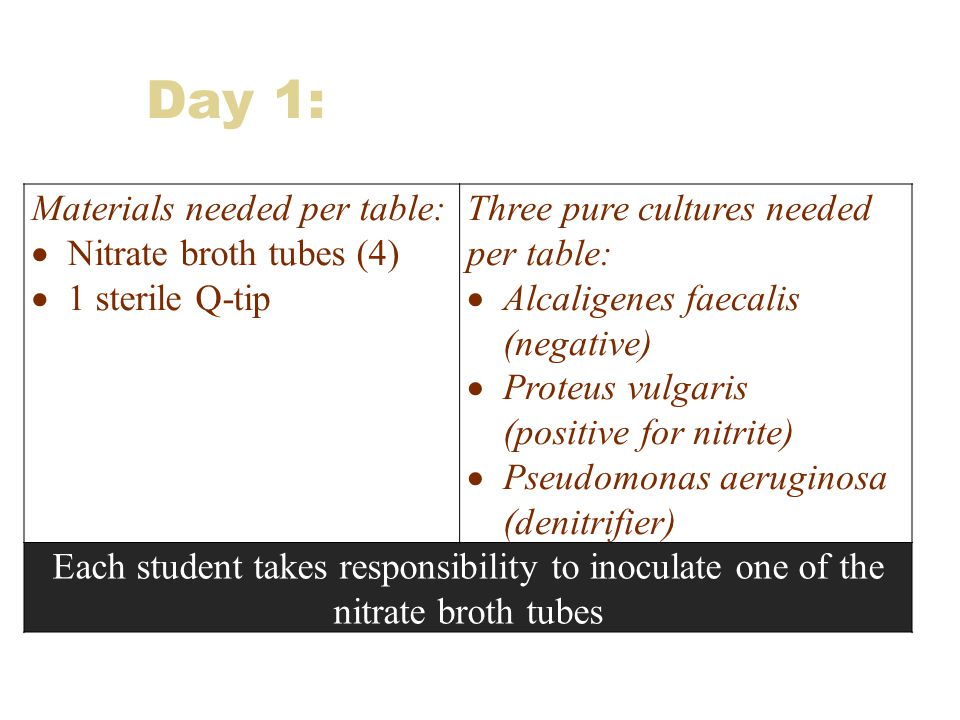 Day 1: Materials needed per table:  Nitrate broth tubes (4)  1 sterile Q-tip Three pure cultures needed per table:  Alcaligenes faecalis (negative)  Proteus vulgaris (positive for nitrite)  Pseudomonas aeruginosa (denitrifier) Each student takes responsibility to inoculate one of the nitrate broth tubes