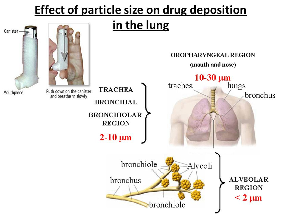 Effect of particle size on drug deposition in the lung
