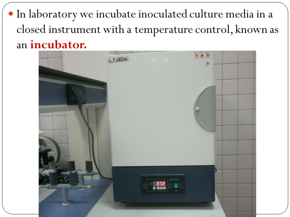 In laboratory we incubate inoculated culture media in a closed instrument with a temperature control, known as an incubator.