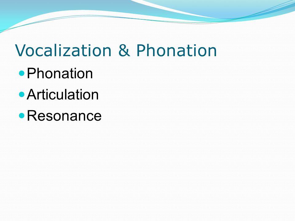 Vocalization & Phonation Phonation Articulation Resonance