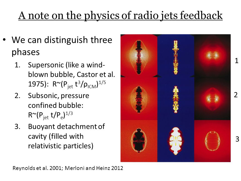 A note on the physics of radio jets feedback We can distinguish three phases 1.Supersonic (like a wind- blown bubble, Castor et al.