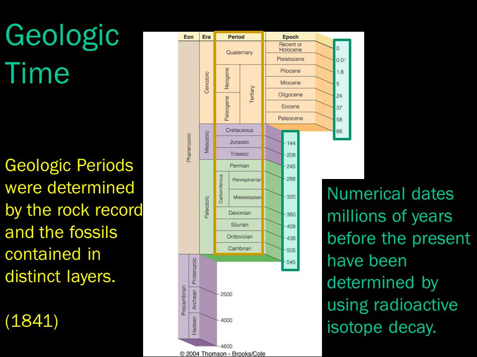 Geologic Periods were determined by the rock record and the fossils contained in distinct layers.