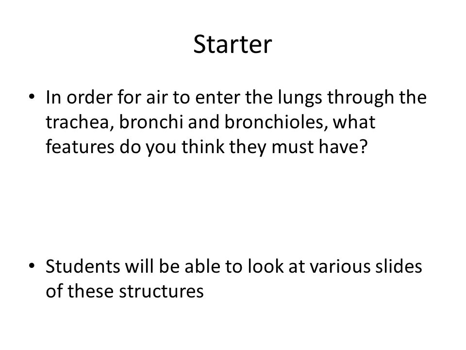 Starter In order for air to enter the lungs through the trachea, bronchi and bronchioles, what features do you think they must have? Students will be
