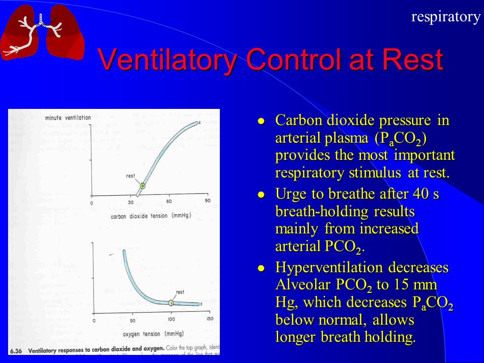 respiratory Ventilatory Control at Rest Carbon dioxide pressure in arterial plasma (P a CO 2 ) provides the most important respiratory stimulus at rest.