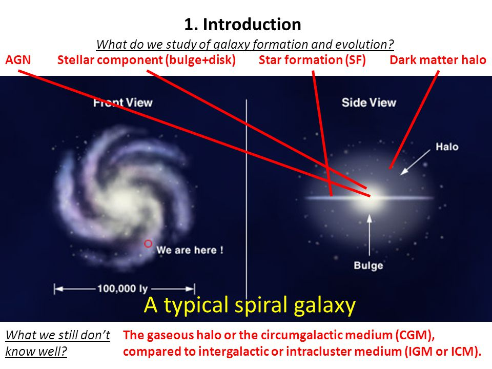 What do we study of galaxy formation and evolution.