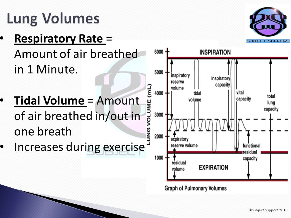 ©Subject Support 2010. Respiratory Rate = Amount of air breathed in 1 Minute.