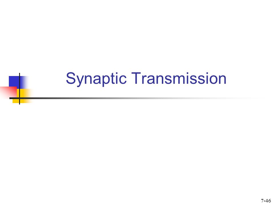 Synapse  Is a functional connection between a neuron (presynaptic) and another cell (postsynaptic)  There are chemical and electrical synapses  Synaptic transmission at chemical synapses is via neurotransmitters (NT)  Electrical synapses are rare in NS 7-47
