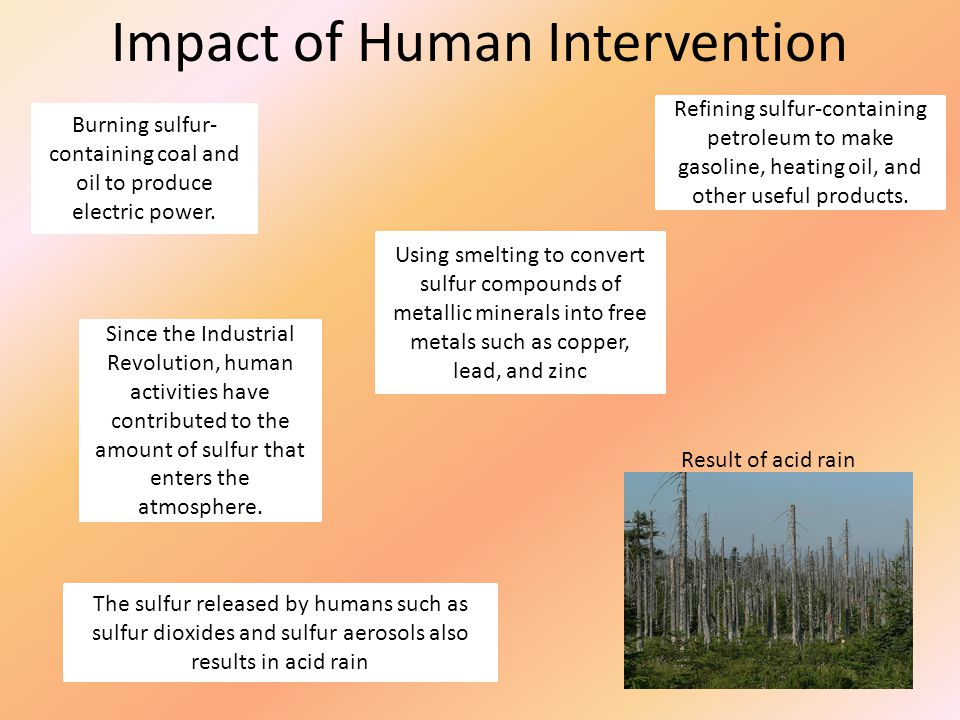 Impact of Human Intervention Burning sulfur- containing coal and oil to produce electric power. Refining sulfur-containing petroleum to make gasoline,