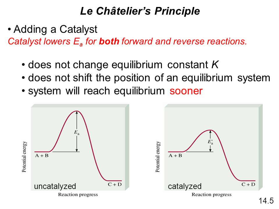 uncatalyzedcatalyzed 14.5 Adding a Catalyst Catalyst lowers E a for both forward and reverse reactions. does not change equilibrium constant K does no