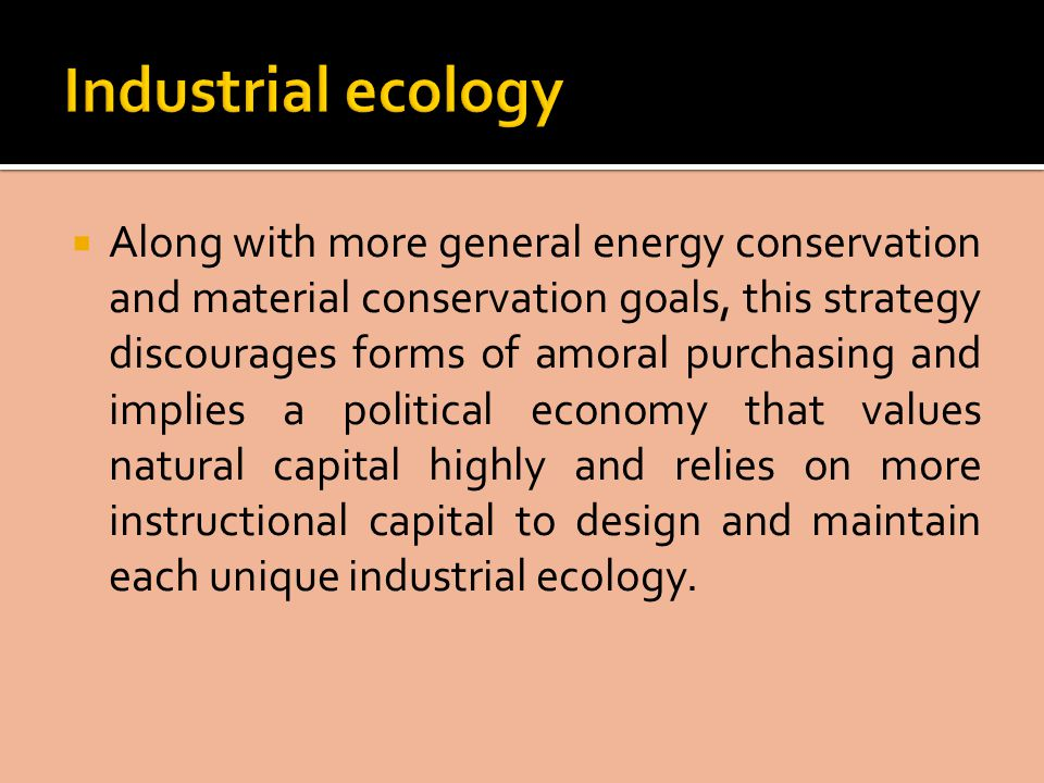  Along with more general energy conservation and material conservation goals, this strategy discourages forms of amoral purchasing and implies a political economy that values natural capital highly and relies on more instructional capital to design and maintain each unique industrial ecology.