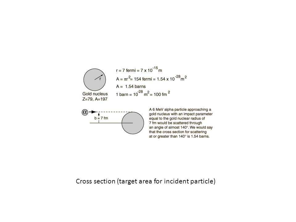 Cross section (target area for incident particle)