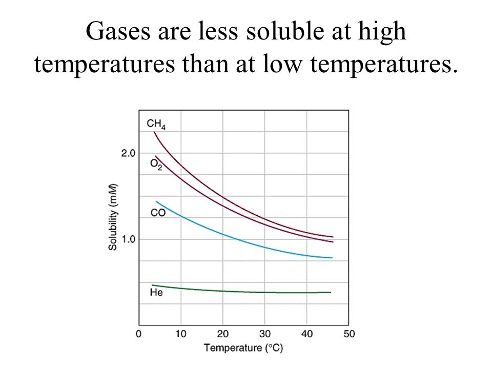 Gases are less soluble at high temperatures than at low temperatures.