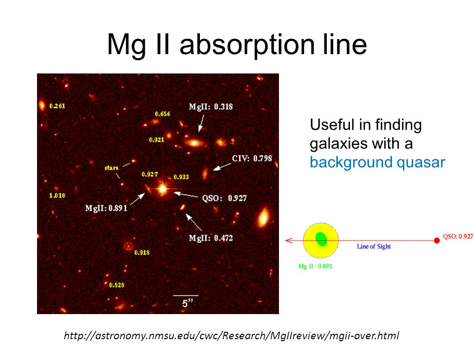 Mg II absorption line Useful in finding galaxies with a background quasar http://astronomy.nmsu.edu/cwc/Research/MgIIreview/mgii-over.html