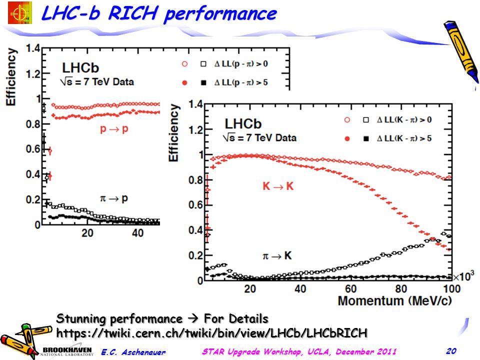 LHC-b RICH performance E.C.