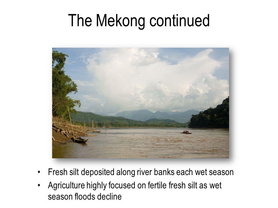 The Mekong continued Fresh silt deposited along river banks each wet season Agriculture highly focused on fertile fresh silt as wet season floods decline
