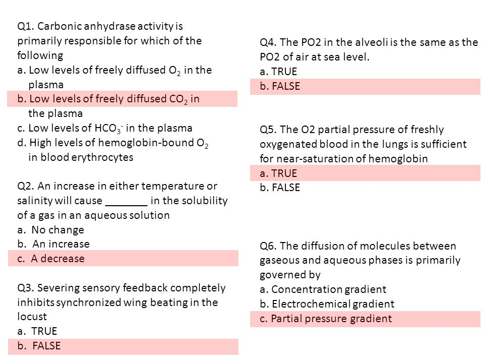 Q1. Carbonic anhydrase activity is primarily responsible for which of the following a.