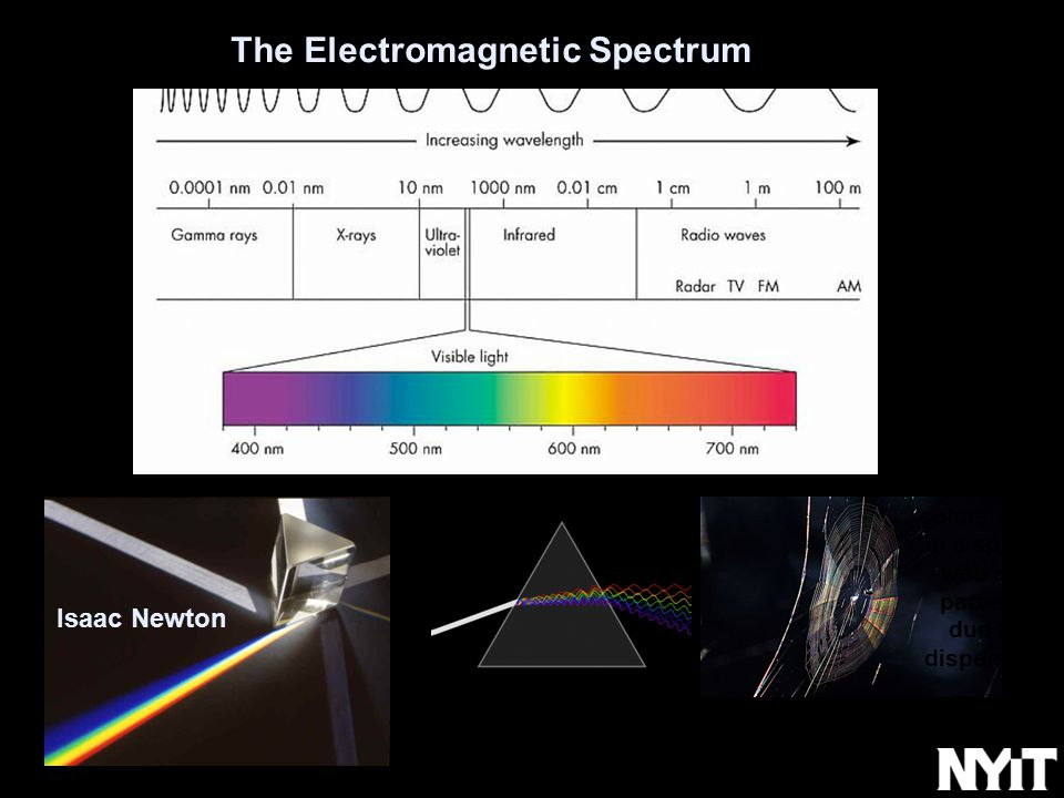 The Electromagnetic Spectrum Isaac Newton colors seen in a spider web are partially due to dispersion