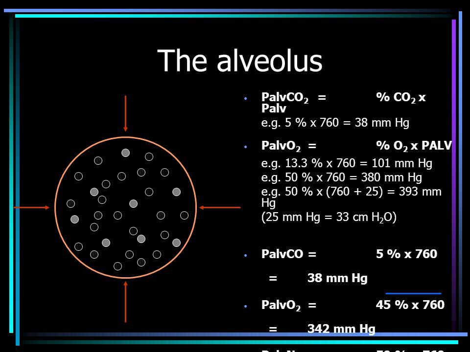 PalvCO 2 =% CO 2 x Palv e.g.5 % x 760 = 38 mm Hg PalvO 2 =% O 2 x PALV e.g.