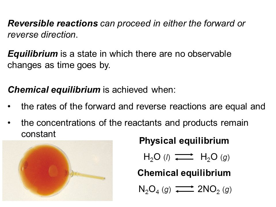 N 2 O 4 (g) 2NO 2 (g) Start with NO 2 Start with N 2 O 4 Start with NO 2 & N 2 O 4 equilibrium