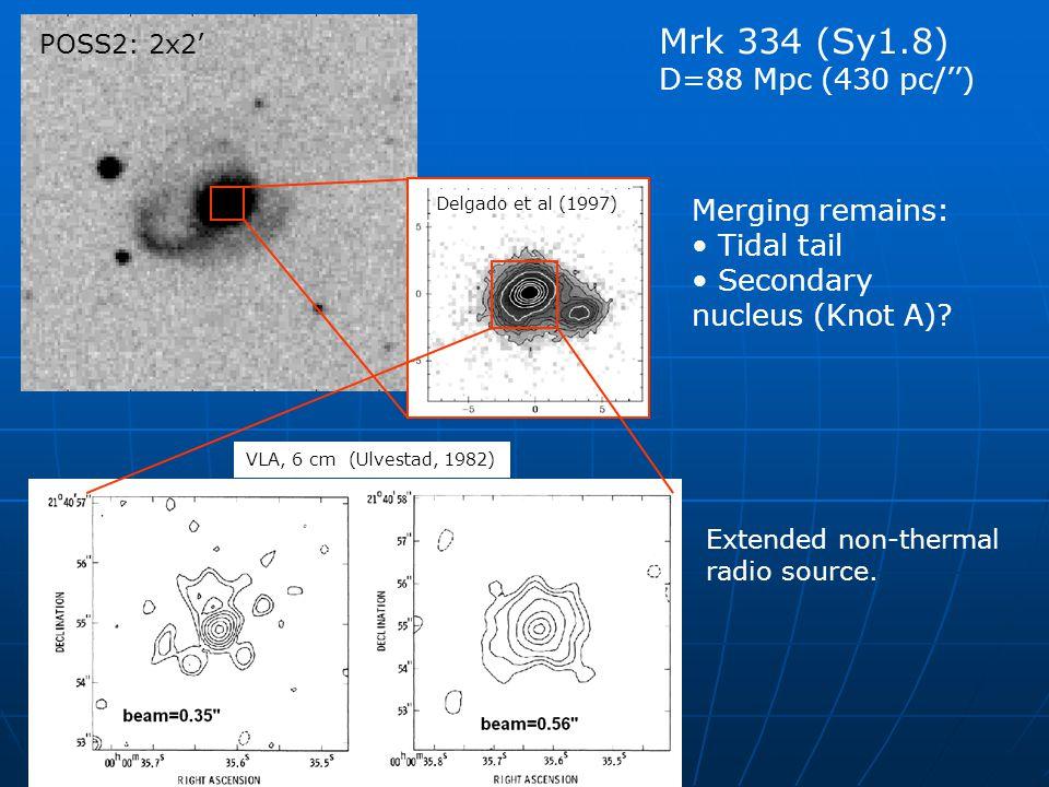 POSS2: 2x2' Delgado et al (1997) VLA, 6 cm (Ulvestad, 1982) Mrk 334 (Sy1.8) D=88 Mpc (430 pc/'') Extended non-thermal radio source. Merging remains: T