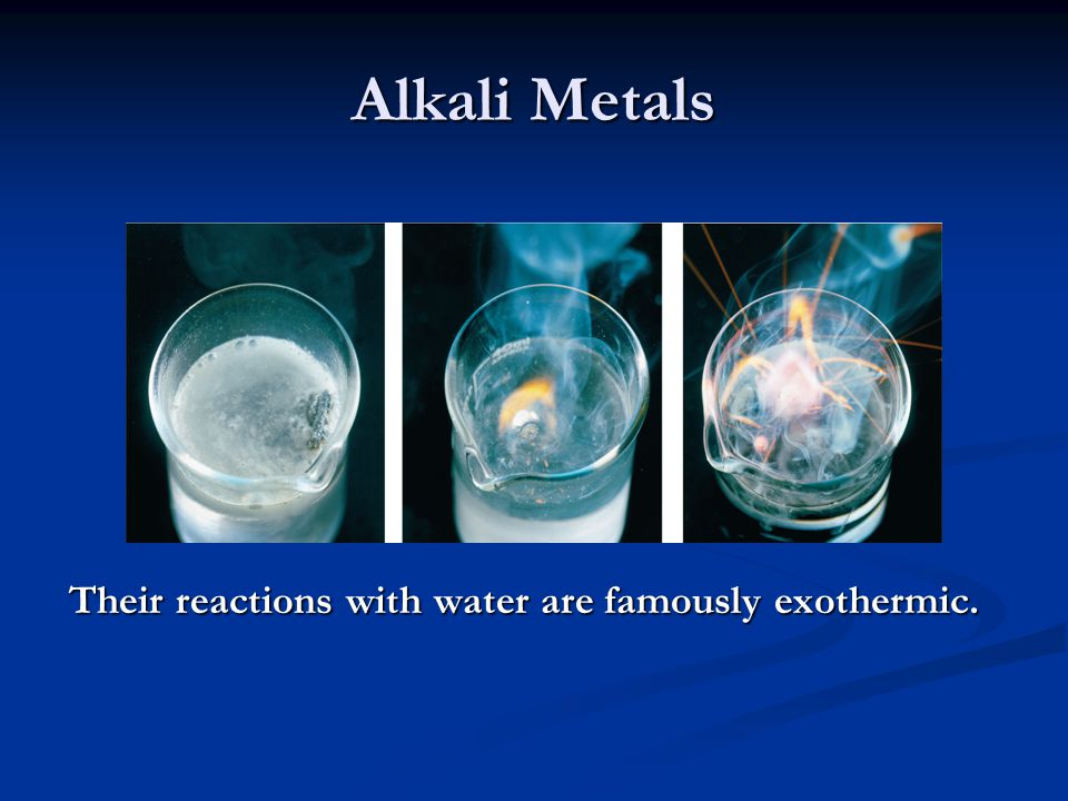 Alkali Metals Their reactions with water are famously exothermic.