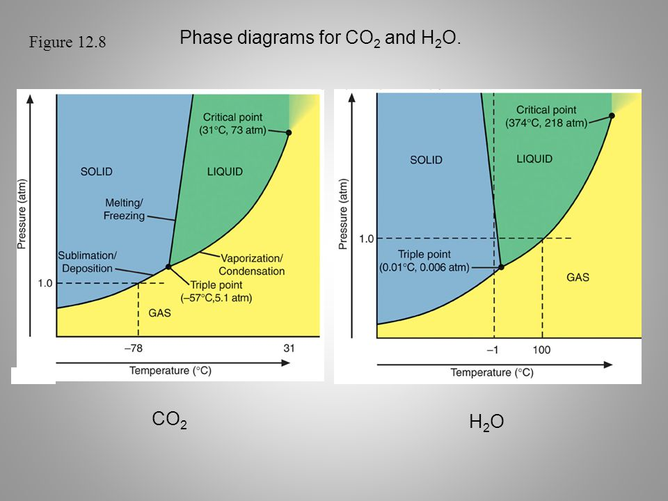 Figure 12.8 Phase diagrams for CO 2 and H 2 O. CO 2 H2OH2O