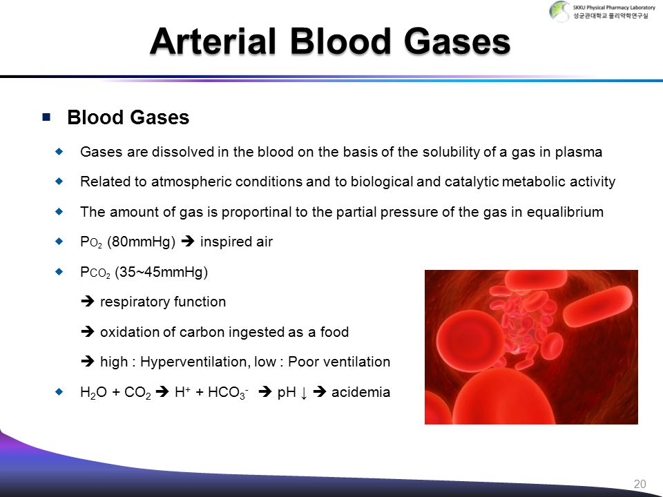  Blood Gases  Gases are dissolved in the blood on the basis of the solubility of a gas in plasma  Related to atmospheric conditions and to biologic