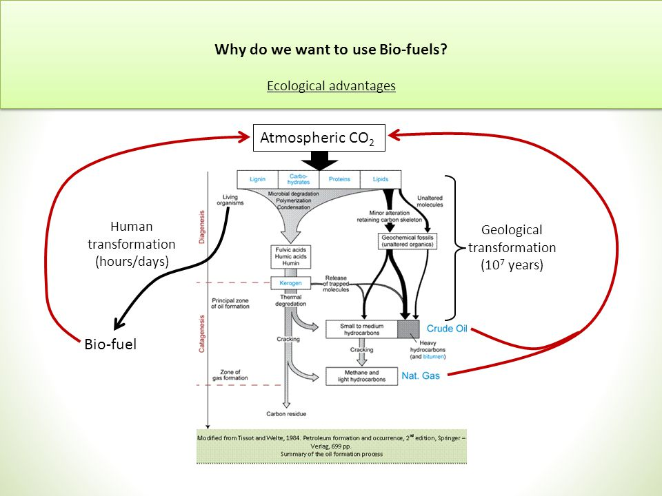 Geological transformation (10 7 years) Human transformation (hours/days) Bio-fuel Why do we want to use Bio-fuels.