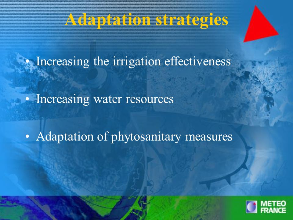 Adaptation strategies Increasing the irrigation effectiveness Increasing water resources Adaptation of phytosanitary measures