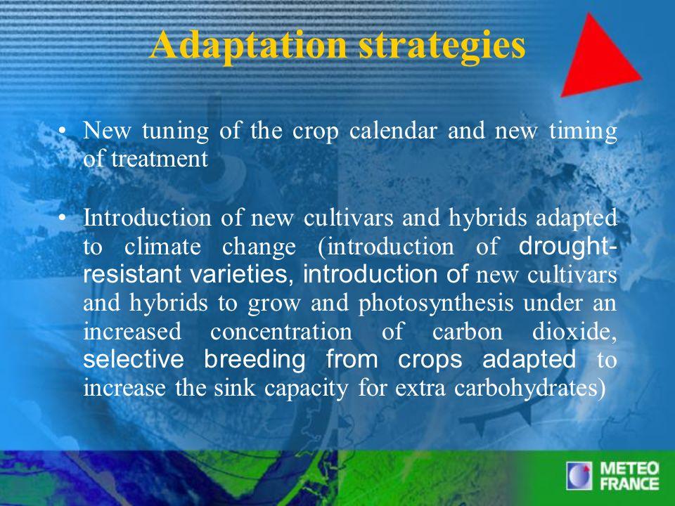 Adaptation strategies Increasing the irrigation effectiveness Increasing water resources Adaptation of phytosanitary measures