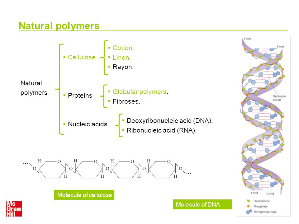 Natural polymers Natural polymers  Cellulose  Proteins  Nucleic acids  Cotton.  Linen.  Rayon.  Globular polymers.  Fibroses.  Deoxyribonucle