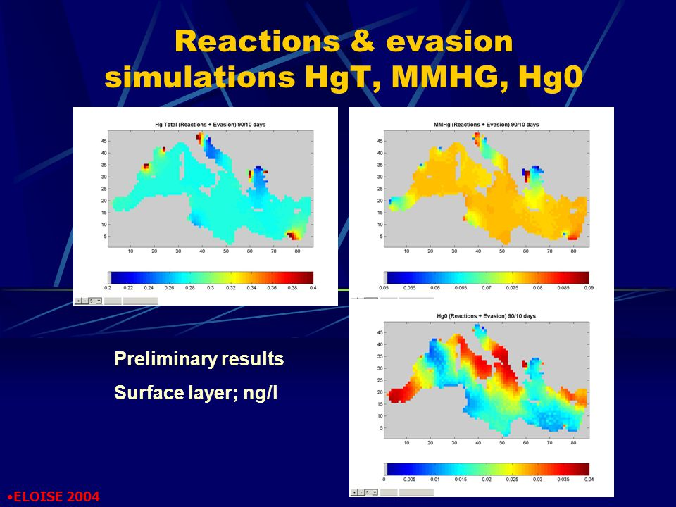 Reactions & evasion simulations HgT, MMHG, Hg0 Preliminary results Surface layer; ng/l ELOISE 2004