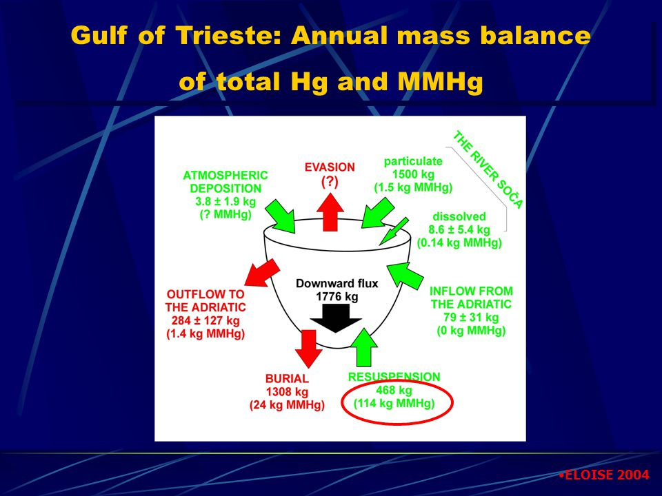 Gulf of Trieste: Annual mass balance of total Hg and MMHg Gulf of Trieste: Annual mass balance of total Hg and MMHg ELOISE 2004