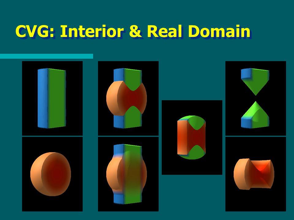 CVG: Interior & Real Domain