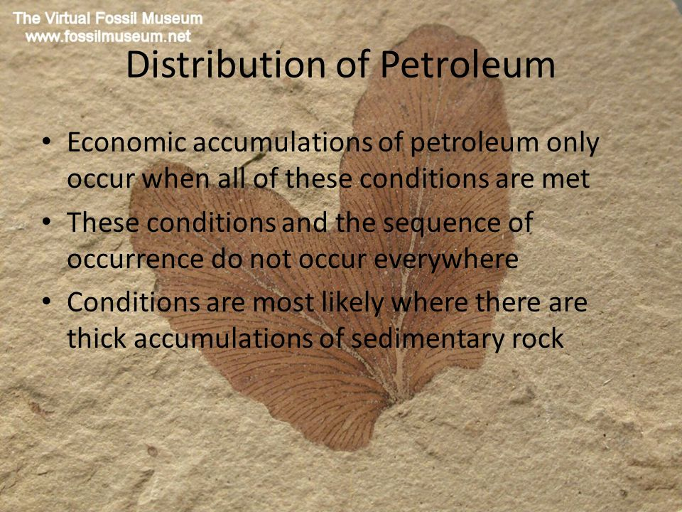 Distribution of Petroleum Economic accumulations of petroleum only occur when all of these conditions are met These conditions and the sequence of occurrence do not occur everywhere Conditions are most likely where there are thick accumulations of sedimentary rock