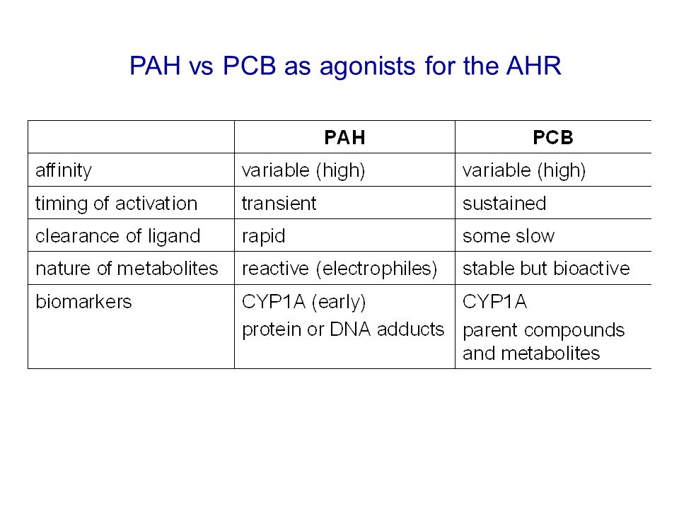 PAH vs PCB as agonists for the AHR