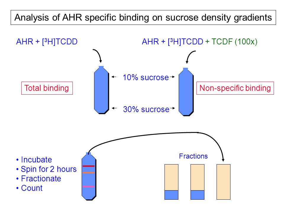 AHR + [ 3 H]TCDDAHR + [ 3 H]TCDD + TCDF (100x) Fractions Incubate Spin for 2 hours Fractionate Count 30% sucrose 10% sucrose Analysis of AHR specific binding on sucrose density gradients Total bindingNon-specific binding