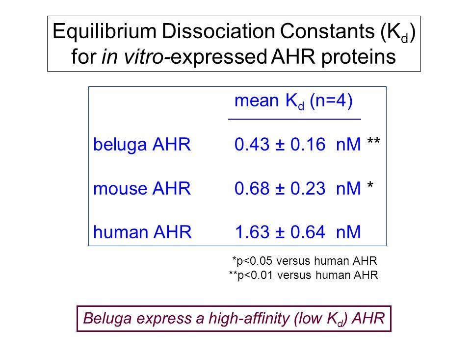 Equilibrium Dissociation Constants (K d ) for in vitro-expressed AHR proteins *p<0.05 versus human AHR **p<0.01 versus human AHR Beluga express a high-affinity (low K d ) AHR mean K d (n=4) beluga AHR0.43 ± 0.16 nM ** mouse AHR0.68 ± 0.23 nM * human AHR1.63 ± 0.64 nM