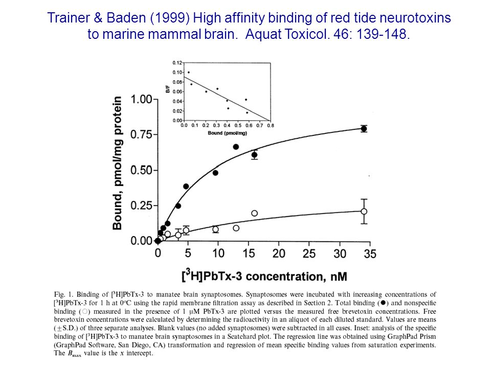 Trainer & Baden (1999) High affinity binding of red tide neurotoxins to marine mammal brain.
