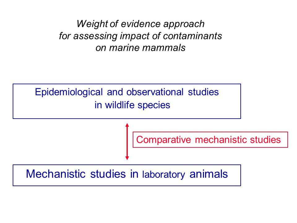Weight of evidence approach for assessing impact of contaminants on marine mammals Epidemiological and observational studies in wildlife species Comparative mechanistic studies Mechanistic studies in laboratory animals