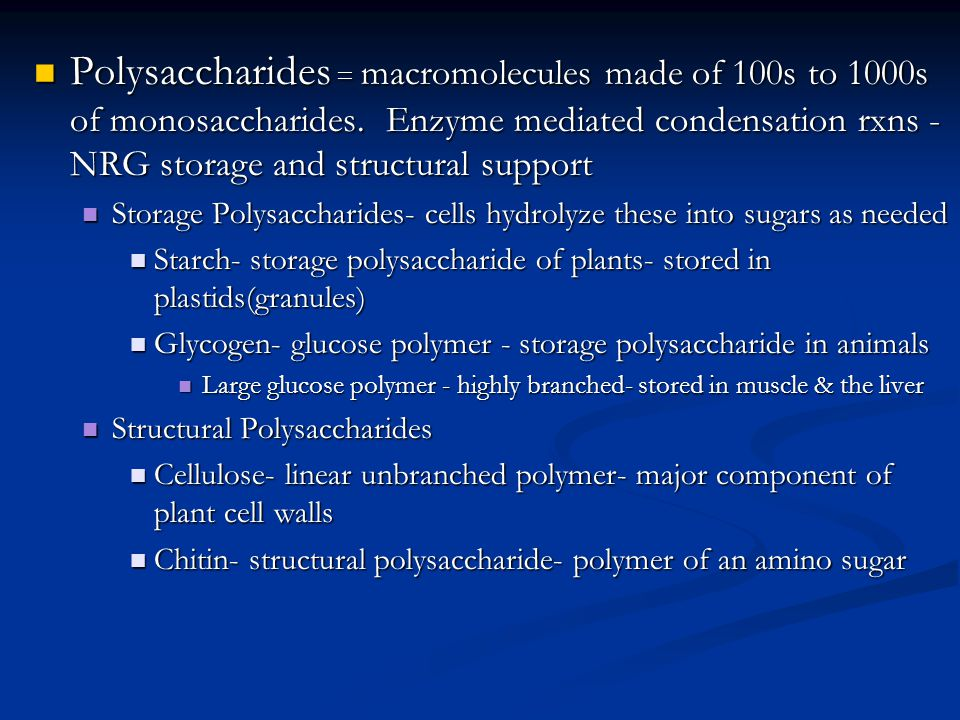 Polysaccharides = macromolecules made of 100s to 1000s of monosaccharides. Enzyme mediated condensation rxns - NRG storage and structural support Poly