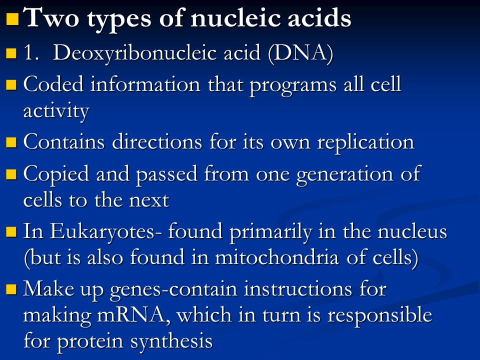 Two types of nucleic acids Two types of nucleic acids 1.Deoxyribonucleic acid (DNA) 1.Deoxyribonucleic acid (DNA) Coded information that programs all